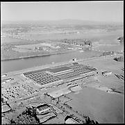Y-560400A-11. Union Stockyards, April 1956.
