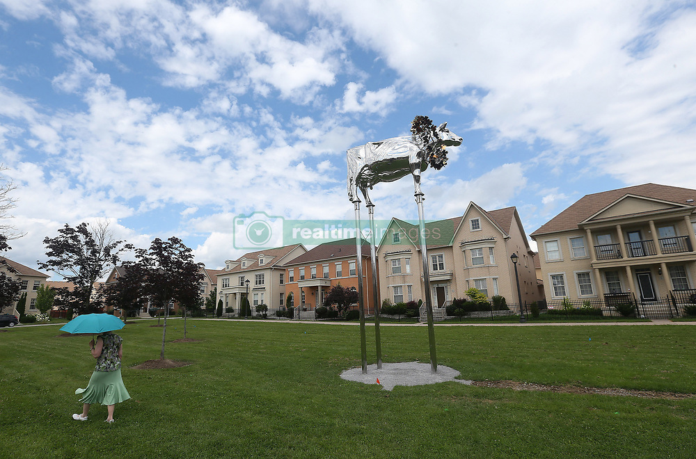 """July 27, 2017 - Markham, ON, Canada - MARKHAM, ON- JULY 27  -  High above a parkette on Charity Cresent in the Cathedraltown neighbourhood a cow is causing a beef in the neighbourhood. The cow called ''Charity, Perpetuation of Perfection'', was apparently a prize-winning Holstien for the donor and the statue is dubbed """"Brookview Tony Charity.â€ù The cow sits on land once owned by the family  in Markham. July 27, 2017.  Steve Russell/Toronto Star (Credit Image: © Steve Russell/The Toronto Star via ZUMA Wire)"""