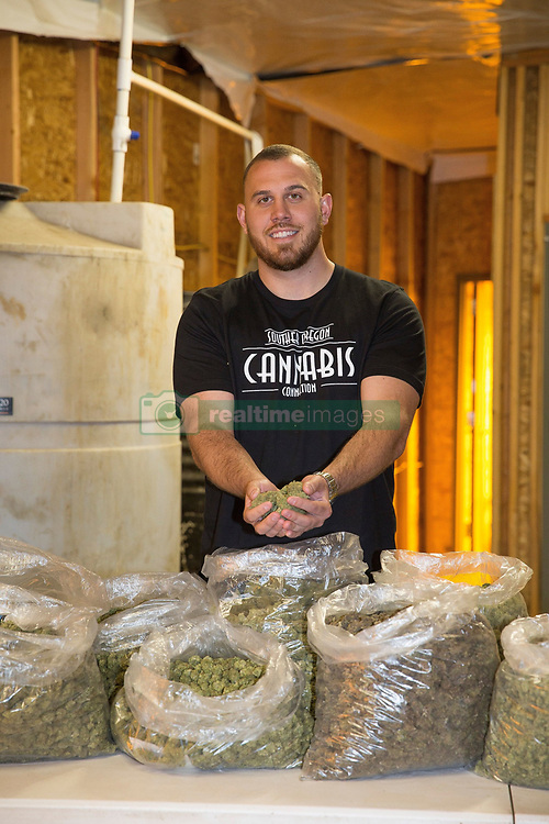 EXCLUSIVE: Meghan Markle's nephew Tyler Dooley is a Cannabis farmer who is planning a new drug called Markle's Sparkle. 25 year old Tyler is too busy growing Millions of Dollars worth of the sticky icky at his greenhouse in Oregon to worry about the upcoming big day. 16 Apr 2018 Pictured: Tyler Doole. Photo credit: MEGA TheMegaAgency.com +1 888 505 6342