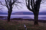 An early morning empty landscape showing Loch Scridain landscape near the Old Smithy, Pennyghael, Isle of Mull, Scotland. Loch Scridain is a long sea loch, with a west-south west aspect, on the western, or Atlantic coastline of the island of Mull.
