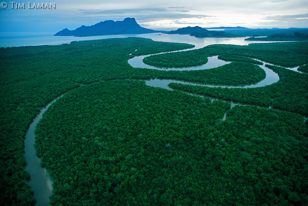 An aerial view of the Salak River with Mount Santubong in the distance.