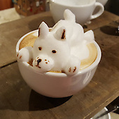 The first 3D latte art in the world