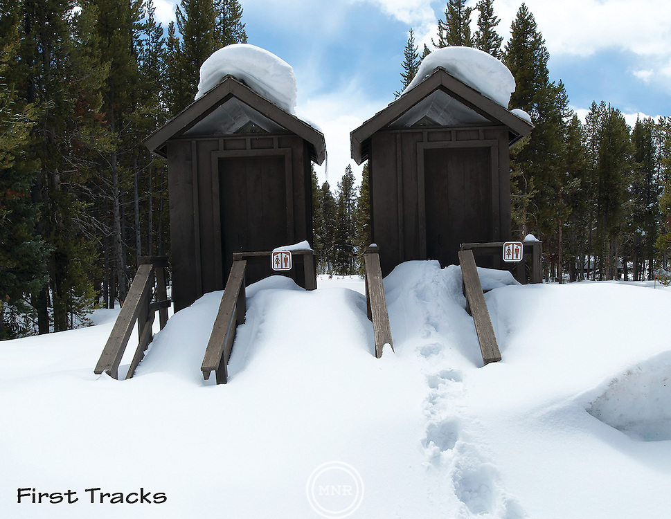 These First Tracks in Yellowstone don't always to lead to a scenic location.