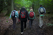 Six walkers blur as they walk through an English wood during a weekend ramble. The friends and colleagues make their way along a country path, through an oak forest in central Kent, south-east England. Our point of view follows the people as they blur, their rucksacks containing lunch and berries, their boots treading on the soft ground.