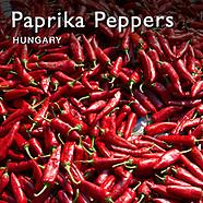 Paprika Chilis | Pictures Photos Images & Fotos