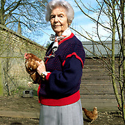 A lifelong lover of chickens, Deborah Devonshire holds one of her brown and buff crossbreeds at her home on the Chatsworth Estate, Derbyshire. Deborah Vivien Cavendish, the Dowager Duchess of Devonshire, née The Hon. Deborah Freeman-Mitford, is the youngest and last surviving of the six Mitford sisters whose political affiliations and marriages were a prominent feature of English culture in the 1930s and 1940s.