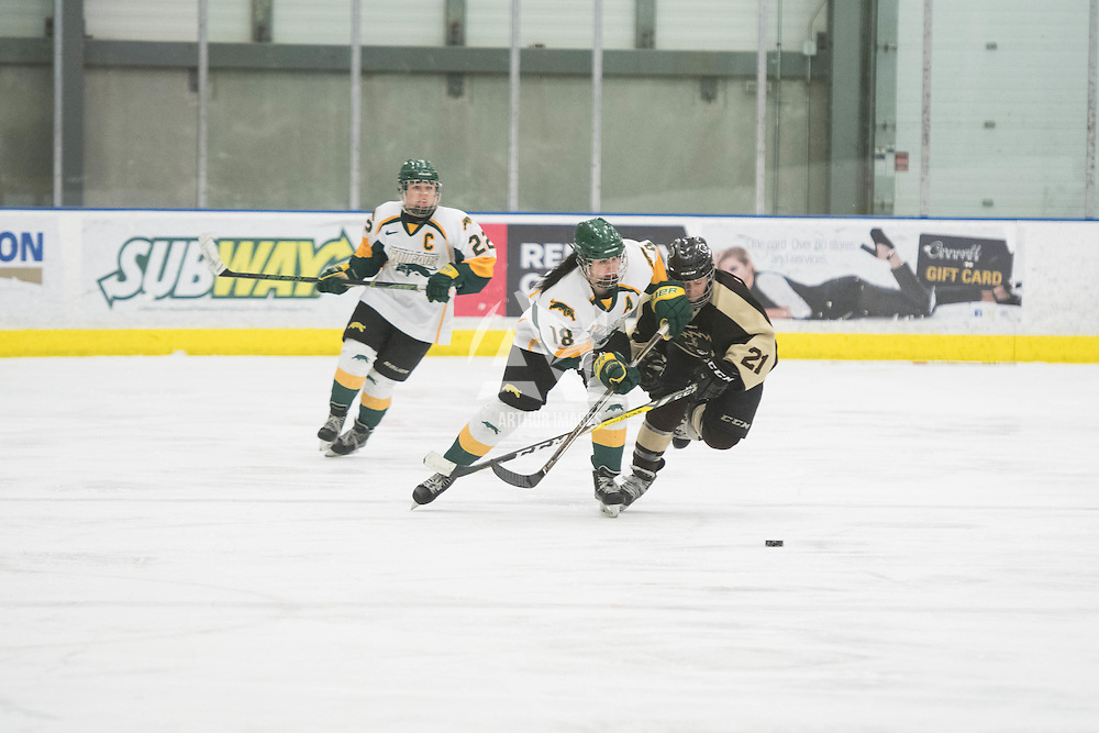 5th year forward Meghan Sherven (18) of the Regina Cougars in action during the Women's Hockey home game on January 7 at Co-operators arena. Credit: Arthur Ward/Arthur Images