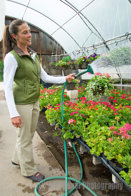 A young woman waters flowers at a greenhouse in Jackson Hole, Wyoming.