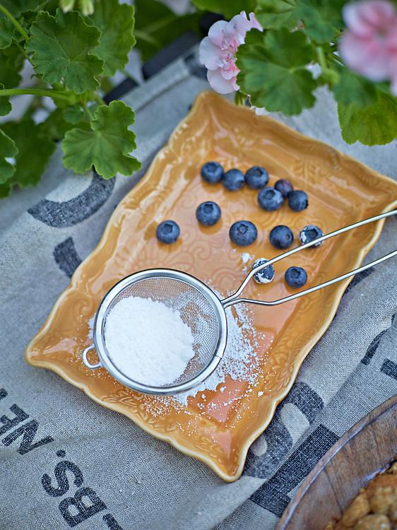 Härliga blåbärstider