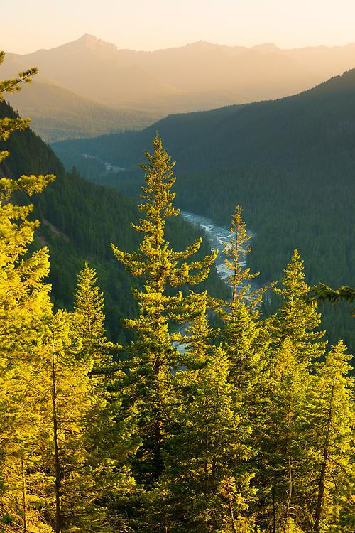 Paradise River at Mount Rainier National Park, Washington State, USA