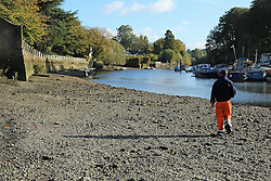 © Licensed to London News Pictures. 03/11/2013. Exposed riverbed at Twickenham at low tide this morning. The annual Thames Draw off has got underway. The opening of the weir at Richmond Lock allows the water level between Richmond and Teddington Locks to go down dramatically at low tide, exposing huge swathes of normally covered riverbed. During the Draw Off period, maintenance will take place on the weirs and an inspection of the riverbed will take place Credit : Rob Powell/LNP
