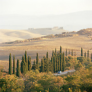 A car driving in the countryside in the region of Val D'Orcia, Tuscany, Italy
