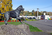 HUNTERVILLE, New Zealand - 27 April 2020 - The bond between farmers and their faithful working dogs is celebrated in the New Zealand town of Hunterville by a statue of a huntaway farm dog. Strong and versatile, with a loud, deep bark, huntaways are New Zealand's most common farm dog, and are invaluable on sheep farms. Picture: Giordano Stolley/Allied Picture Press/APP