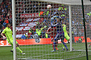 Brighton central midfielder, Dale Stephens (6) scores a goal and celebrates to make the score 1-1 during the Sky Bet Championship match between Middlesbrough and Brighton and Hove Albion at the Riverside Stadium, Middlesbrough, England on 7 May 2016. Photo by Simon Davies.