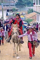 Todos Santos Festival