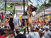 16 JULY 2016 - UBUD, BALI, INDONESIA:  Men slide a sarcophagus into the pyre that will burn it during the mass cremation ceremony in Ubud. Local people in Ubud exhumed the remains of family members and burned their remains in a mass cremation ceremony Wednesday. Almost 100 people were cremated and laid to rest in the largest mass cremation in Bali in years this week. Most of the people on Bali are Hindus. Traditional cremations in Bali are very expensive, so communities usually hold one mass cremation approximately every five years. The cremation in Ubud concluded Saturday, with a large community ceremony.    PHOTO BY JACK KURTZ