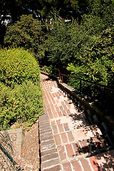 San Francisco: Greenwich Street steps near Coit Tower.  Photo copyright Lee Foster. Photo # casanf104279