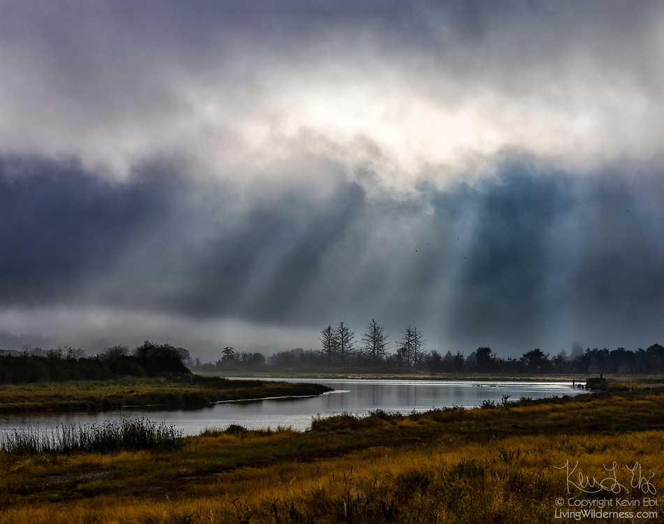 Crepuscular rays, also known as God beams, shine down on the Stillaguamish River on a foggy morning on Leque Island near Stanwood, Washington.
