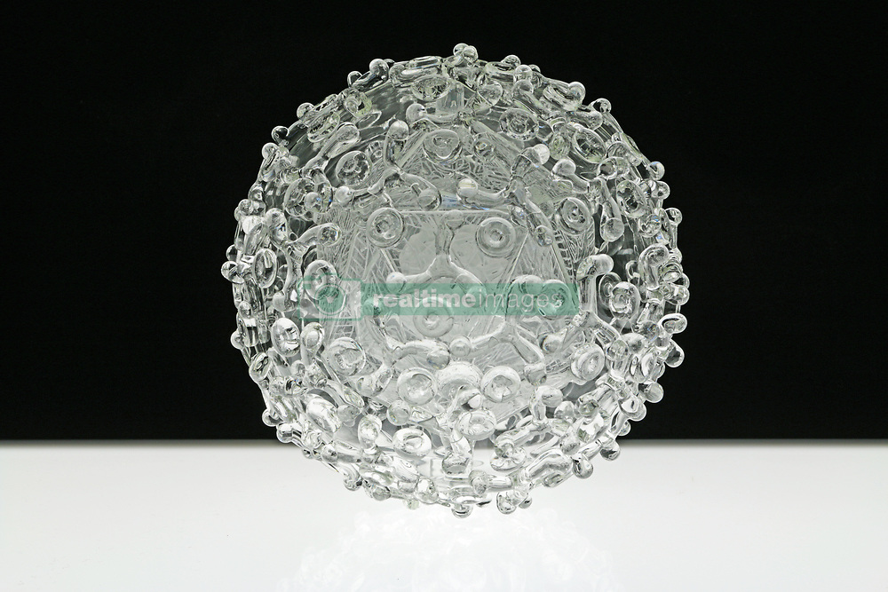 """IN PHOTO: Bluetongue<br /> <br /> Internationally-renowned British artist Luke Jerram has created a coronavirus glass sculpture in tribute to the huge global scientific and medical effort to combat the pandemic.<br /> <br /> Made in glass, at 23cm in diameter, it is 1 million times larger than the actual virus. <br /> <br /> It was commissioned 5 weeks ago by a university in America to reflect its current and future research and learning in health, the environment and intelligent systems, and its focus on solving global challenges.  <br /> <br /> Luke says: """"Helping to communicate the form of the virus to the public, the artwork has been created as an alternative representation to the artificially coloured imagery received through the media. In fact, viruses have no colour as they are smaller than the wavelength of light."""" <br /> <br /> """"This artwork is a tribute to the scientists and medical teams who are working collaboratively across the world to try to slow the spread of the virus. It is vital we attempt to slow the spread of coronavirus by working together globally, so our health services can manage this pandemic."""" <br /> <br /> Made through a process of scientific glassblowing, the coronavirus model is based on the latest scientific understanding and diagrams of the virus.  <br /> <br /> Profits from this glass model are going to Médecins Sans Frontières (MSF) who will be assisting developing countries deal with the fallout of the coronavirus epidemic. <br /> <br /> This new model is just the latest in Luke's Glass Microbiology series of virus sculptures. Luke and his glassblowing team have, in the past, made other sculptures of viruses from swine flu and Ebola to smallpox and HIV.<br /> <br /> Respected in the scientific community, the glass sculptures have featured inThe Lancet,Scientific American,British Medical Journal (BMJ)and on the front cover ofNature Magazine.  <br /> <br /> TheGlass Microbiologysculptures are in museum collections around the world, i"""