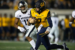 California quarterback Chase Garbers (7) is pursued by Nevada defensive back Daiyan Henley (11) on a quarterback keeper during the third quarter of an NCAA college football game, Saturday, Sept. 4, 2021, in Berkeley, Calif. (AP Photo/D. Ross Cameron)