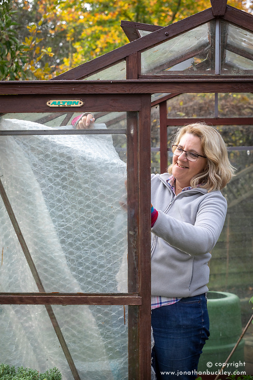 PInning up plastic bubblewrap to insulate a greenhouse ready for winter