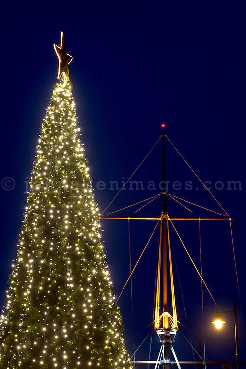 Kinsale Christmas Tree and Mast.<br /> Pic. John Allen