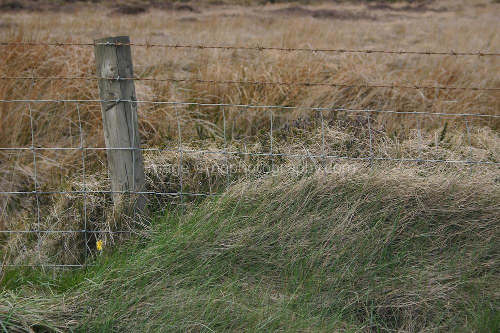 Wire fencing around field, Wicklow, Ireland