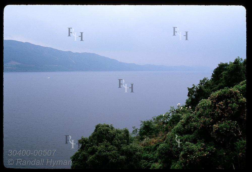 Bushy slope frames misty Loch Ness, Britain's largest lake, on a July morn; Drumnadrochit. Scotland