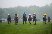 April 25, 2015. Queen's Cup Steeplechase. April 25, 2015. Queen's Cup Steeplechase.