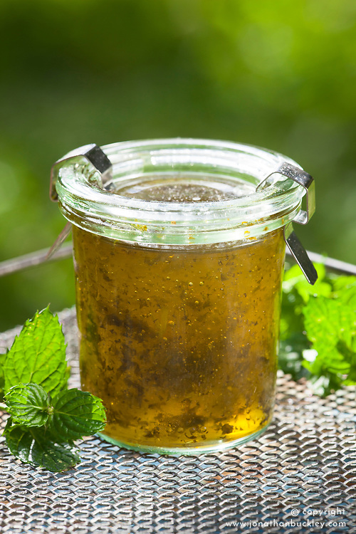 Mint jelly made with apples