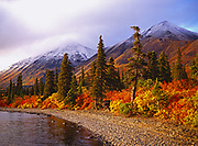 Wilderness shoreline of Lower Twin Lake, Lake Clark National Park, Alaska.