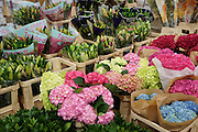 """""""New Covent Garden Wholesale Flower Market"""" (Photograph must be captioned like this - I had to sign a contract!!)<br /><br />INTERNATIONAL FORIEGN FACTORY FLOWERS FOR SALE at New Covent Garden Wholesale Flower Market<br /><br />The main selling days for local British fresh flowers are on Monday and Thursday mornings. The main sellers are Pratleys<br /><br />British local flowers, grown nearby, count for around 10% of the UK market, traveling less than a tenth of their foreign counterparts which are often flown in from abroad. Nearly 90% of the flowers sold in the UK are actually imported, and many travel over 3000 miles. Local flower farms help biodiversity, providing food and habitat to a huge variety of wildlife, insects including butterflies, bugs, and bees. Often local flower farmers prefer to grow organic rather than using pesticides. British flowers bloom all the year around, even in the depths of winter, and there are local flower farms throughout the country.<br /><br />Many people like the idea of the just picked from the garden look, and come to flower farms throughout Britain to pick their own for weddings, parties and garden fetes. Others come for the joy of a day out in the countryside with their family. Often a bride and her family will come to pick the flowers for her own wedding, some even plant the seeds earlier in the year."""