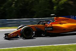 July 28, 2018 - Budapest, Hungary - Motorsports: FIA Formula One World Championship 2018, Grand Prix of Hungary, .#14 Fernando Alonso (ESP, McLaren F1 Team) (Credit Image: © Hoch Zwei via ZUMA Wire)