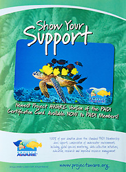 Project AWARE - PADI Certification Card Use, USA, Image ID: Green-Sea-Turtle-0097