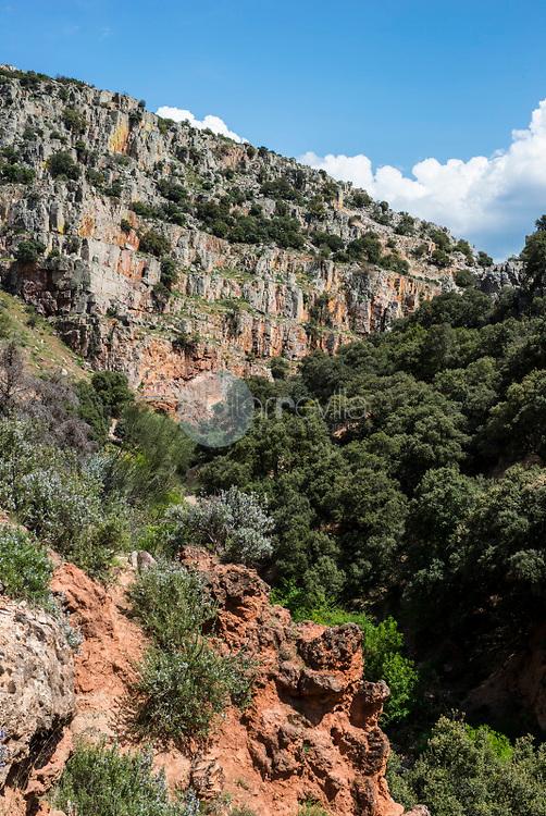 Microrreserva Estrecho del Hocino. Sierra de Alcaraz. Salobre. Albacete.  España ©ANTONIO REAL HURTADO / PILAR REVILLA