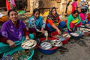 Colourful dressed women vendors selling fish, Ima Keithel women´s market, Imphal, Manipur, India