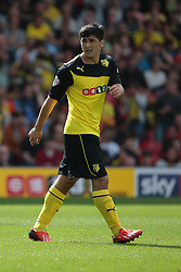 Watford's Fernando Forestieri  - Photo mandatory by-line: Nigel Pitts-Drake/JMP - Tel: Mobile: 07966 386802 25/08/2013 - SPORT - FOOTBALL -Vicarage Road Stadium - Watford -  Watford v Nottingham Forest - Sky Bet Championship