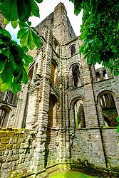 Kelso Abbey, Scottish Borders<br /> <br /> (c) Andrew Wilson   Edinburgh Elite media