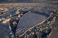 The sea ice, drift ice, ice floes, Svalbard, Norway, Arctic