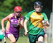 Meath v Wexford - All-Ireland Camogie Intermediate Championship 2013