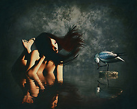 A girl lies in the water and looks down at a seagull. –<br /> -<br /> BUY THIS PRINT AT<br /> <br /> FINE ART AMERICA<br /> ENGLISH<br /> https://janke.pixels.com/featured/the-girl-and-the-seagull-jan-keteleer.html<br /> <br /> <br /> WADM / OH MY PRINTS<br /> DUTCH / FRENCH / GERMAN<br /> https://www.werkaandemuur.nl/nl/shopwerk/Het-meisje-en-de-zeemeeuw/808840/132?mediumId=1&size=70x55<br /> <br /> -