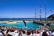 Sea Life Park, Oahu, Hawaii