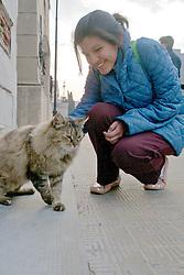 Person Petting Cat At La Recoleta Cemetery