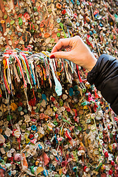 United States, Washington, Seattle. A woman adds a piece of gum to the famous gum wall in Post Alley, Seattle, Washington.
