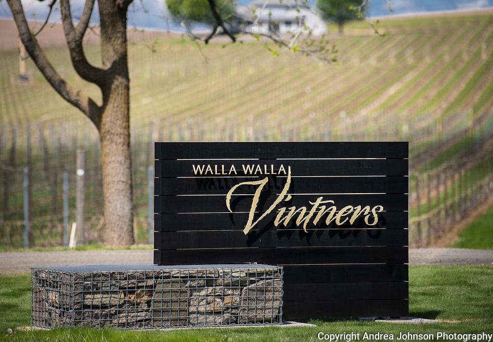 Walla Walla Vintners, spring scenes, Walla Walla, Washington