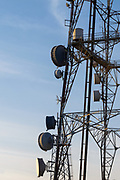 Microwave dish antenna on television broadcast transmission lattice tower at sunrise on Mt Coot-tha, Brisbane, Queensland, Australia <br /> <br /> Editions:- Open Edition Print / Stock Image