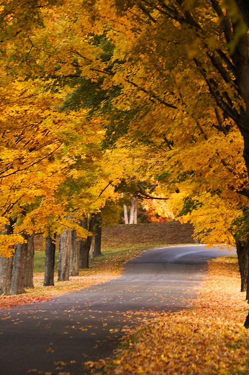 upstate New York