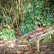 A sign marks a bomb crater made by a high explosive bomb dropped by a B-52 as part of the American bombing campaign during the Vietnam War. The bombing campaign stripped the landscape of all vegetation, but it has now come back. In this example, bamboo grows in the crater. The Cu Chi tunnels, northwest of Ho Chi Minh City, were part of a much larger underground tunnel network used by the Viet Cong in the Vietnam War. Part of the original tunnel system has been preserved as a tourist attraction where visitors can go down into the narrow tunnels and see exhibits on the defense precautions and daily life of the Vietnamese who lived and fought there.