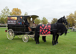 © Licensed to London News Pictures. 23/10/2015. Bristol, UK. Service wagon pulled by 2 black Friesian horses, as enactment Lancers in World War One uniform on horseback parade through Bristol to launch the Bristol Poppy Appeal organised by the Royal British Legion. Relatives of Bristol Poppy seller Olive Cooke at an event outside Bristol Cathedral, organised by the Royal British Legion, received a ceramic poppy in memory of Olive from the Blood Swept Lands and Seas of Red exhibition. Photo credit : Simon Chapman/LNP