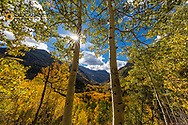 Looking down the Crtystal River Valley in autumn near Marble, Colorado, USA